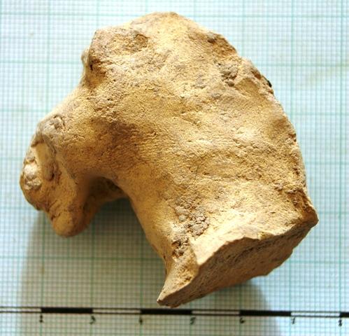 Terakotová hlava koně